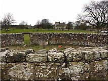 NY9393 : Elsdon Church from the Pinfold by Andrew Curtis