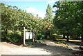 TM1644 : Christchurch Park by N Chadwick