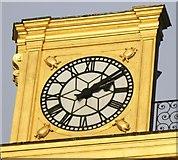 SE2934 : Turtles on Leeds Civic Hall by Rick Carn