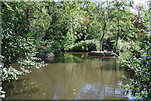 TM1645 : Lake in Christchurch Park by N Chadwick