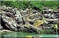 S6900 : Badger's Cove, Dunmore East by Albert Bridge
