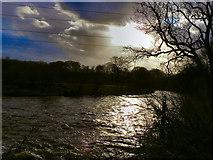 SJ9489 : River Goyt by David Dixon
