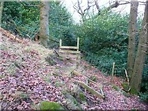 SE0023 : Stile into Paper Mill Wood, Cragg Vale by Humphrey Bolton