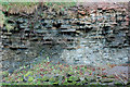 NT2662 : Carboniferous rocks in closeup, Roslin Glen by Jim Barton
