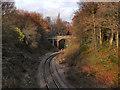 SJ9589 : Bowden Lane Railway Bridge by David Dixon