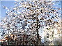 SU6351 : Snow scene - 'Top of town' by Sandy B