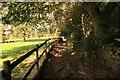 SJ5256 : The Sandstone Trail near Peckforton by Jeff Buck