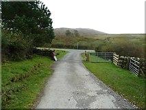 NX6060 : A cattle grid over the Laghead farm track by Ann Cook