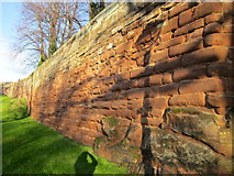 SJ4065 : Chester City Walls by Jeff Buck