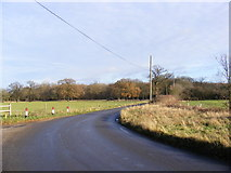 TM3667 : Rendham Road by Adrian Cable