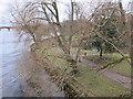 NO1223 : Norie Miller Gardens from Queens Bridge by Lis Burke