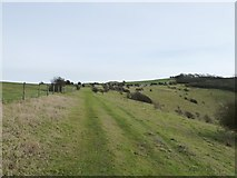 TQ4210 : Track on the northern rim of Malling Down by Dave Spicer