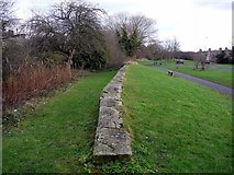 NZ1164 : Site of the former North Wylam Railway Station by Andrew Curtis
