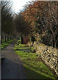 SE2853 : Path beside Otley Road by Derek Harper
