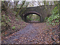 ST0369 : Bridge over the line of the Cowbridge & Aberthaw Railway by Guy Butler-Madden