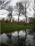 SP8307 : Tree reflections in a pond at the Springs Farm by Peter S