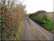 SS4937 : Ash Road looking east by Chris McAuley