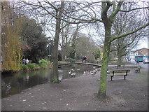 TL0506 : River Gade at Hemel Hempstead by PAUL FARMER