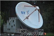 SX9265 : Torquay : Babbacombe Model Village - Satellite Station by Lewis Clarke
