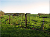 TF8825 : Fields by Raynham Hall by Evelyn Simak