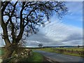 ST4893 : Scene from lay-by, Crick Road near Shirenewton by Ruth Sharville