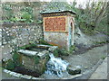 TQ2411 : Spring water at Fulking by Dave Spicer