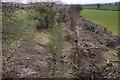 ST0172 : Mill Street Platform, Cowbridge & aberthaw Railway by Guy Butler-Madden