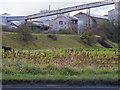 ST0367 : Cowbridge & Aberthaw Railway Embankment by Guy Butler-Madden
