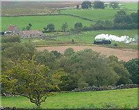 SE8499 : View across Eller Beck by Graham Horn