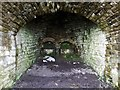 NY5857 : Foresthead Quarry lime kilns (detail) by Andrew Curtis