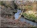 SJ8393 : Chorlton Brook by David Dixon