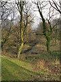 SJ8393 : Hough End Clough by David Dixon