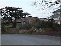SS9712 : Farm buildings and cedar at Tidcombe Hall by David Smith