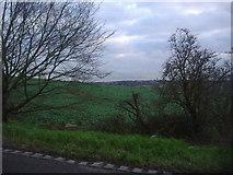 TQ3097 : Fields by Hadley Road, Enfield by David Howard
