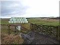 NZ0289 : Silage bales near Gallows Hill Farm by Oliver Dixon