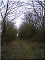 TM2668 : Kings Lane Bridleway to Tannington Long Lane by Adrian Cable
