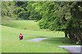 SD3896 : Path, Windermere, Cumbria by Christine Matthews