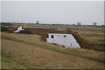 TQ7178 : Small pond , Cliffe Marshes by N Chadwick