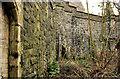 J4582 : Retaining wall, Helen's Bay (2) by Albert Bridge