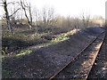 SK0749 : Disused siding at Cauldon Low by Stephen Craven