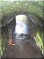 ST2687 : Foot tunnel beneath railway, Rhiwderin by John Lord