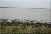TQ7178 : The Thames Estuary at Lower Hope Point by N Chadwick