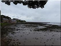 NU0052 : Berwick-upon-Tweed: pier and estuary mud by Chris Downer