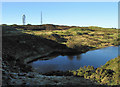 SO5986 : Pond near the masts by Dave Croker