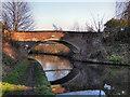 SJ7588 : Bridgewater Canal, Seamon's Moss Bridge by David Dixon