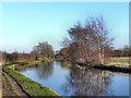 SJ7488 : Bridgewater Canal by David Dixon