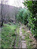 SE0023 : Old packhorse route, Cragg Vale by Humphrey Bolton