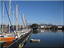 SH5638 : Harbwr Porthmadog Harbour by Alan Fryer