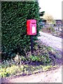 TM2782 : Marsh George V Postbox by Adrian Cable
