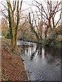 TQ1472 : The River Crane, Crane Park, January by Stefan Czapski